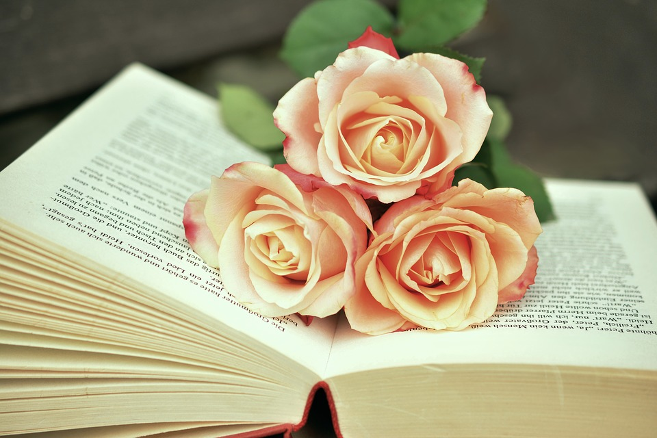 Jeunesse et littérature